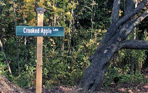 custom address signs